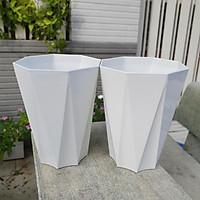 Combo 02 chậu nhựa tám cạnh lớn trắng 33cm x 41cm bền chắc, rất đẹp và trang nhã, phù hợp hoa kiểng, cây ăn trái