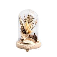 Bình hoa khô thủy tinh - Hoa ly