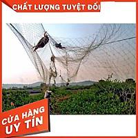 (HÀNG GIA CÔNG) Lưới Bẫy Chim Cu Gáy Gà Đồng Lưới Đánh Chim Cao 7m Mắt Lưới 8cm Hàng Thái Lan Đủ Size