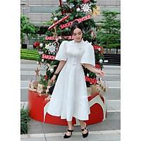 Đầm dự tiệc tay to cổ cao siêu xinh TRIPBLE T DRESS - size M/L (kèm ảnh/video thật) MS264V