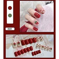 Bộ 24 móng tay giả nail thơi trang như hình (R-001)