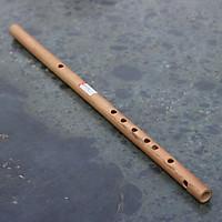 Sáo Trúc (Sáo Ngang) VS2 Tone Si (B4) Nứa Bắc - Sáo Trúc Bùi Gia