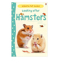 Usborne Pet Guides: Looking after Hamsters