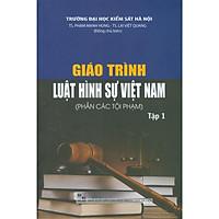 Giáo Trình Luật Hình Sự Việt Nam (Phần Tội Phạm) - Tập 1