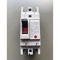 Aptomat MCCB 2P 60A, 100A - Attomat dùng cho át tổng hộ gia đình