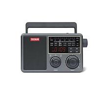 Radio Tecsun RP-307 (Hàng nhập khẩu)