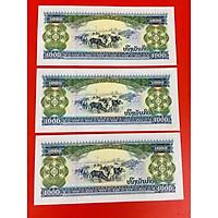 Combo 3 tờ tiền con trâu Lào 1000 Kip xưa - tặng kèm bao lì xì mỗi tờ