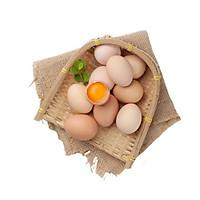 [Chỉ Giao HCM] - Trứng gà ta - Hộp 10