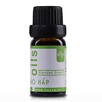 Tinh dầu giúp cân bằng độ ẩm Hô Hấp premium Haeva 10ml - Hàng nhập khẩu Ấn Độ