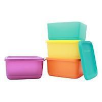 Bộ 4 Hộp Bảo Quản Thực Phẩm Tupperware Medium Summer Fresh