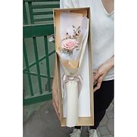 Hộp hoa khô tự nhiên kiểu Hàn Quốc