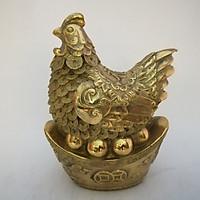 Gà mái đẻ trứng vàng 22cm