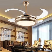 Quạt trần  kết hợp đèn điều hòa không khí- Phòng khách, Phòng bếp, phòng Ngủ Q1