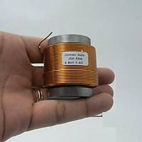 Cuộn cảm 6.8mH lõi sắt từ 2 Jantzen hàng chính hãng