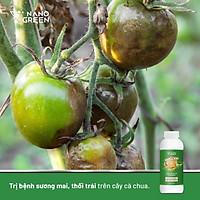 Dung Dịch Nano Xgreen Nano Bạc Đồng (Ag-Cu) 1000ml - Dùng trong nông nghiệp Bảo vệ cây trồng, chăm sóc cây, sản phẩm thân thiện với môi trường.