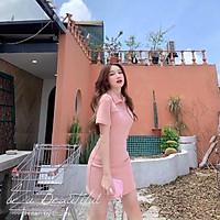 Váy Polo Trơn SuzaHouse Pastel Nữ  Đầm cổ sơ mi dáng ôm body, thun cộc tay màu ĐEN | HỒNG | XÁM Ulzzang HOT