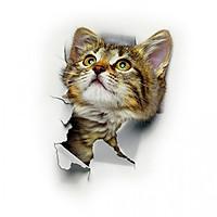 Combo 3 decal dán tường hình mèo 3D