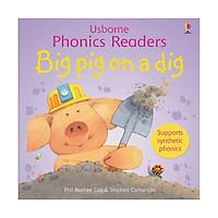 Big Pig On A Dig: Phonics Readers