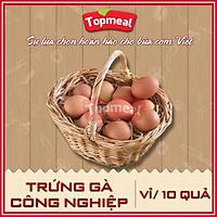 HCM - Trứng gà công nghiệp (vỉ/10 quả) - [Giao nhanh TPHCM]