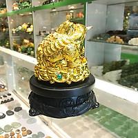 Thiềm thừ vàng trên đế gỗ xoay - Chiêu tài kim thiềm FC065A