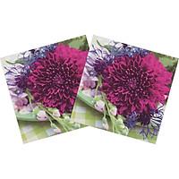 Combo 2 Xấp Khăn Giấy Ăn Trang Trí Bàn Tiệc Tissue Napkins Design Ti-Flair 340325 (33 x 33 cm) - 40 tờ