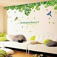 Decal dán tường trang trí nhà đẹp sang trọng cây xanh mát