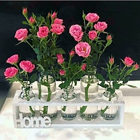 Set 5 lọ hoa thuỷ tinh kèm kệ gỗ trang trí nhà cửa( hình ngẫu nhiên)