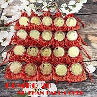 Combo 20 xu Thần Tài màu vàng Cá Chép tặng kèm túi gấm đỏ, dùng để trang trí nhà cửa, xỏ lỗ đeo dây hoặc bỏ vào túi mang theo - TMT Collection - SP005132