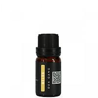 Tinh Dầu Dưa Vàng Viet Oils 10ml