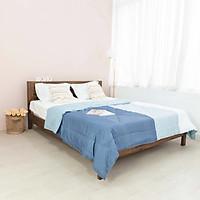 Giường Ngủ Gỗ Tràm MOHO MALAGA 301