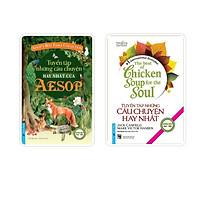 Combo Sách Song Ngữ Tuyển tập những câu chuyện hay nhất của Aesop + Tuyển tập câu chuyện hay nhất Chicken Soup (Tái bản 2021)