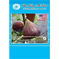 4h Hạt Giống Sung Mỹ - USA (Ficus Carica)