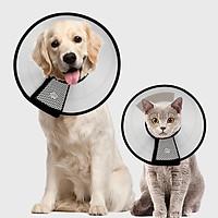 Chinese animal Elizabeth bed dog cat collar collar cat anti-circle ring cat pet dog head cover hood anti-biting dog supplies 5th 10 kg
