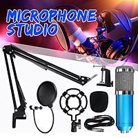 Professional Condenser Microphone Kit Studio Recording Broadcasting+Studio Shock Mount -- Black / Blue