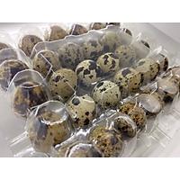 [Chỉ giao HCM] Trứng cút (30 trứng/vỉ)-3109376