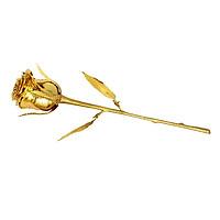 Quà tặng 8/3: Cành hoa hồng mạ vàng 24k