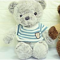 Gấu Teddy - Gấu nhồi bông cao cấp