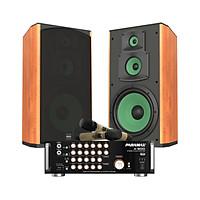 Combo Karaoke  Loa và Amply Tích Hợp Micro  PARAMAX CBZ-1000 Hàng Chính Hãng