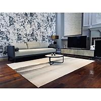 Thảm trải sàn/ Thảm trang trí phòng khách/ Thảm trải sàn phòng ngủ Kaili Brandy BL9017- HÀNG NHẬP KHẨU