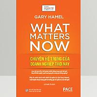 Chuyện Hệ Trọng Của Doanh Nghiệp Thời Nay - (What Matters Now)