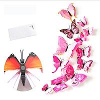 Bộ 12 con bướm cánh kép 3D dán tường trang trí cao cấp sáng tạo M2