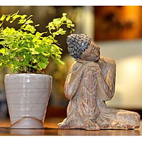 Tượng Phật an nhiên - Màu giả gỗ