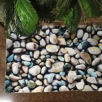 Thảm nhung 3D sỏi đá TSN39 (60x90cm)
