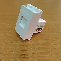Modul ổ cắm mạng LAN Cat5 (lắp ổ cắm âm sàn, âm tường)