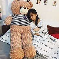 Thú bông Gấu Teddy màu Vani siêu to khổng lồ - Khổ vải 1M8 cao 1M6