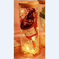 Bình thủy tinh hoa khô kèm dây đèn phát sáng, lọ ước nguyện trang trí phòng - món quà ý nghĩa phù hợp các dịp lễ ( GIAO MÀU NGẪU NHIÊN)
