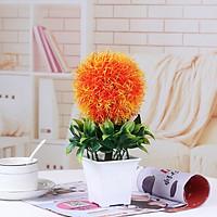 Chậu hoa nhựa để bàn trang trí hoa tròn lá xanh