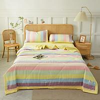 Bộ chăn chần ga giường cotton Tici kẻ LIDACO cao cấp (Nhiều mẫu lựa chọn)