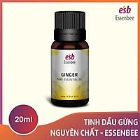 Tinh dầu Gừng – Essenbee – 20ml