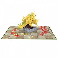 Thiệp 3D pop up Hoa mai